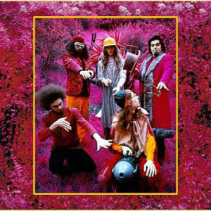 Capt Beefheart & His Magic Band Grow Fins - Rarities