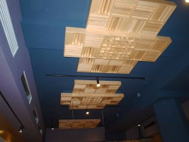 Not only do our ceiling diffusers help with the even flow of sound waves across Allyworld's space, but they look like works of art!